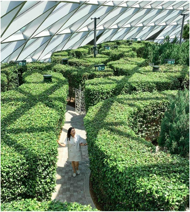 hedge maze in Singapore