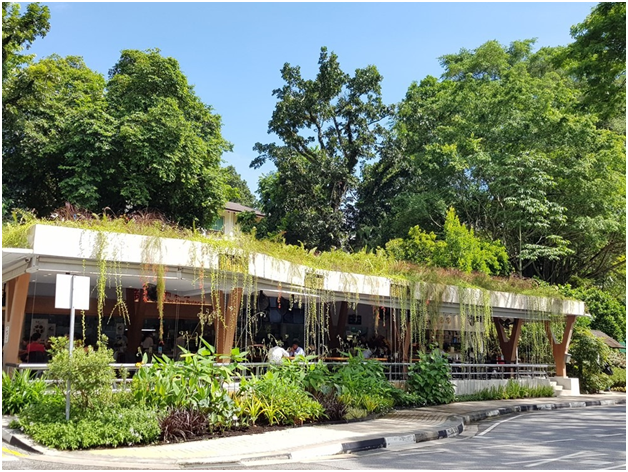 The Food Canopy